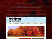 Tablet Preview of pranaonline.com.br